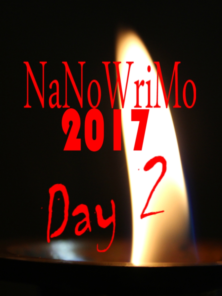 NaNoWriMo Day 2