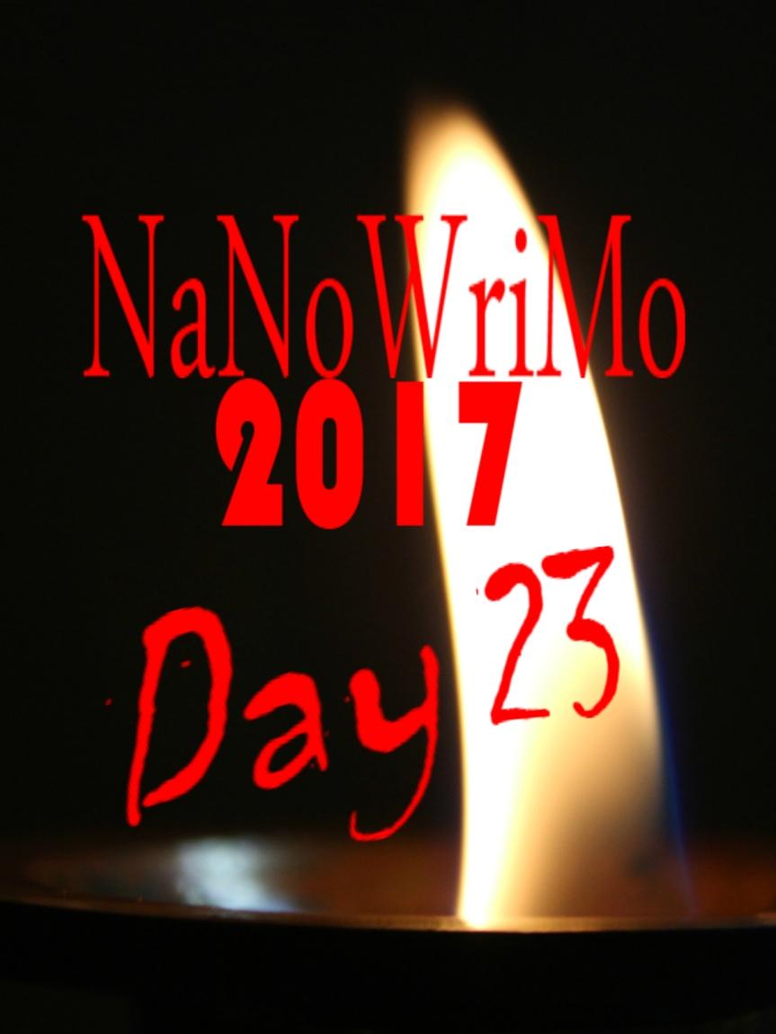 NaNoWriMo Day 23