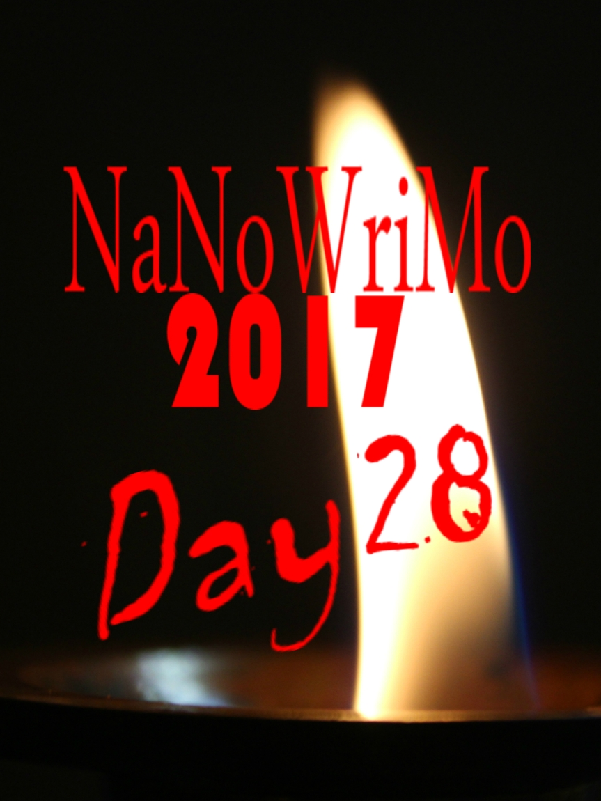 NaNoWriMo Day 28