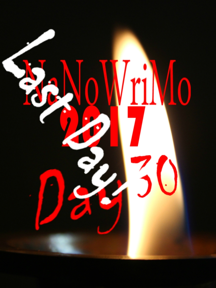NaNoWriMo Day 30