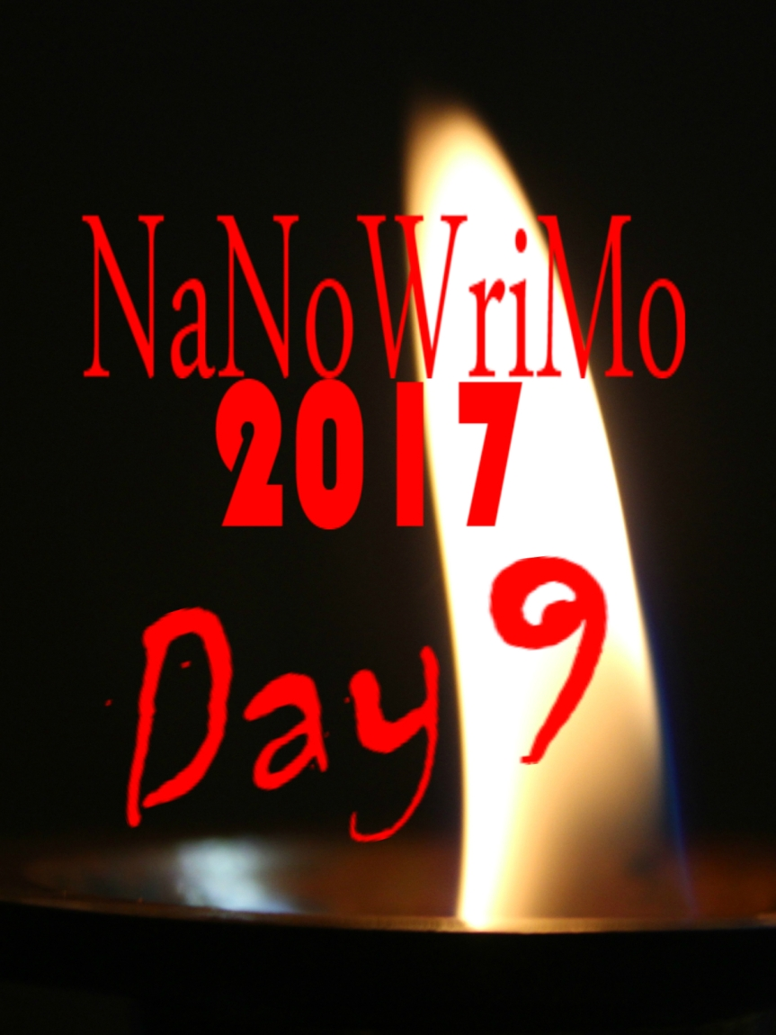 NaNoWriMo Day 9